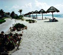 beach view blog